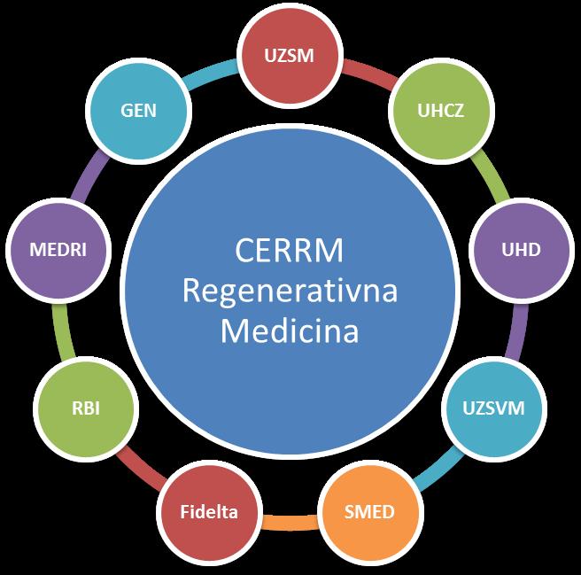 regenerativna-medicina